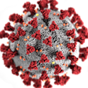 microscopic graphic representation of SARS-CoV-2 virus, the virus that causes COVID-19