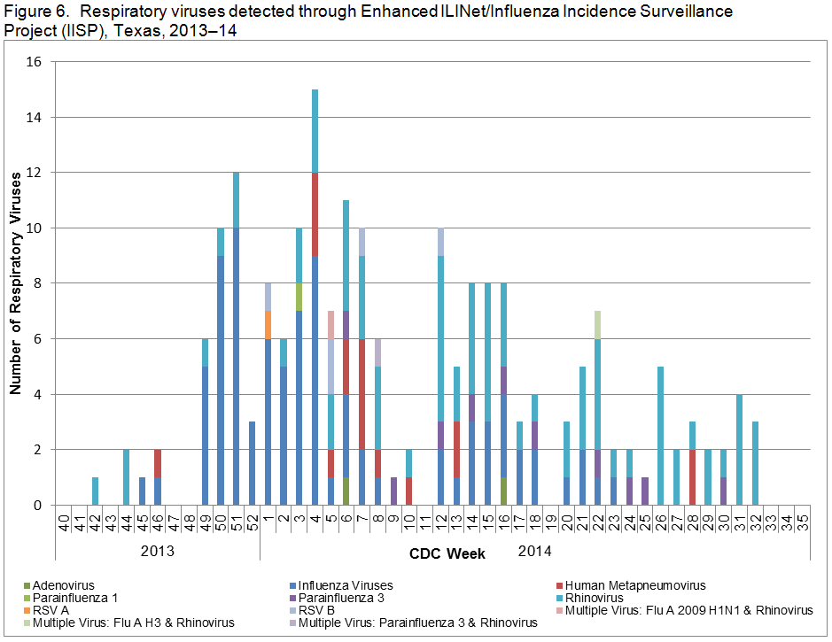 Figure 6.  Respiratory viruses detected through Enhanced ILINet/Influenza Incidence Surveillance Project (IISP), Texas, 2013–14