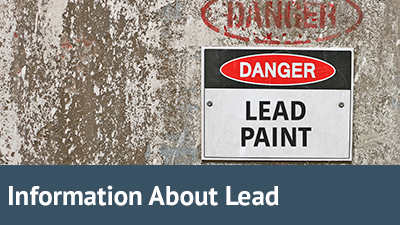 Information about Lead(1)